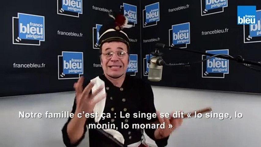 Lo carnavarn, le carnaval ( Oc express)