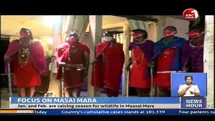 Magical Scenes: Maasai Mara National Reserve in Kenya