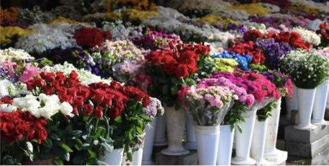Les dix fleurs les plus romantiques à offrir