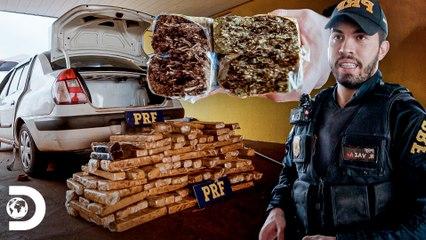 Apreensão de 100 kg de drogas em carro   Operação Fronteira: América do Sul   Discovery Brasil