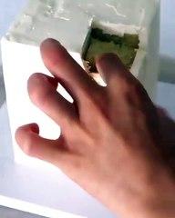 Do it YourSelf Videos 425 HD Deutsch