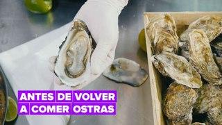 ¿Te gustan las ostras? Conoce su origen antes de comerlas