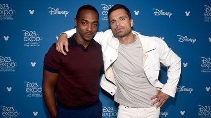 """The """"Falcon and The Winter Soldier"""" Cast is Star-Studded"""
