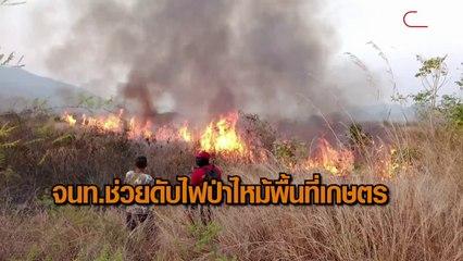 ไฟป่าไหม้พื้นที่เกษตร