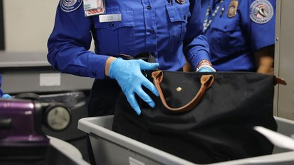 The Strangest Things the TSA Confiscated at U.S. Airports in 2020