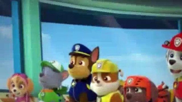Paw Patrol Season 1 Episode 9,10 Pup Pup Goose Pup Pup And Away