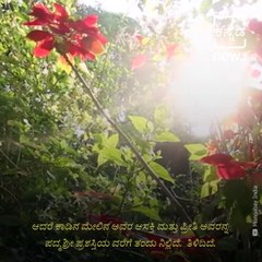 Tulsi Gowda: The Encyclopedia of Forests