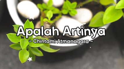 Chintami Atmanagara - Apalah Artinya (Official Lyric Video)