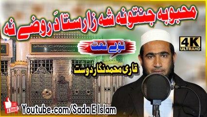 Pashto New HD Naat - Mahbooba Jannatnoa Sha Zaar Sta Da by Q.M. Nigar Dost