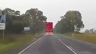 Une vache tente de s'échapper du camion avant l'abattoir