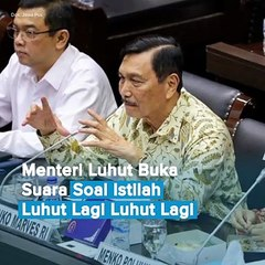 Menteri Luhut Buka Suara Soal Istilah Luhut Lagi Luhut Lagi