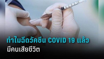 ทำไมฉีดวัคซีน COVID-19 แล้วถึงมีคนเสียชีวิต   PPTV HD 36