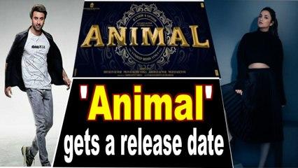 Ranbir-Parineeti starrer 'Animal' gets a release date