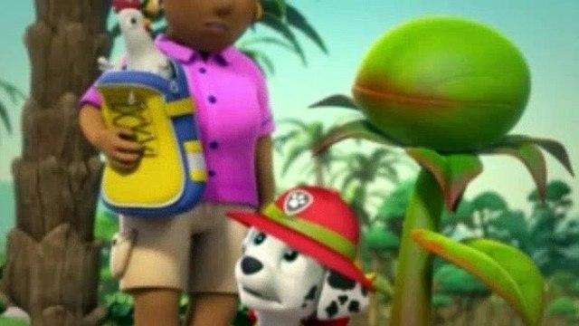 Paw Patrol Season 3 Episode 43 Pups Save A Giant Plant