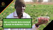 Burkina Faso : De la fraise biologique « made in Burkina Faso »