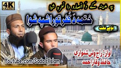 Pashto new Hd naat - Khatma da kufar tora shpa shwa by Raj wali shinwari Hafiz waqar ahmed