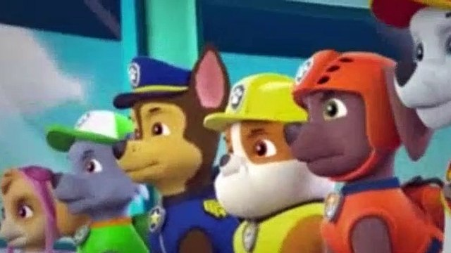 Paw Patrol Season 5 Episode 1 Pups Save The Kitty Rescue Crew