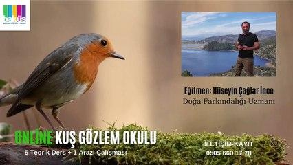 Hüseyin Çağlar İnce'den Online Kuş Gözlem Okulu