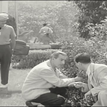 The Mickey Rooney Show | Season 1 | Episode 10 | Diamond in the Rough | Mickey Rooney | Regis Toomey