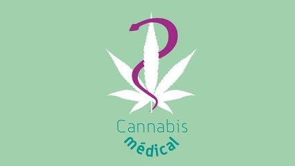 Expérimentation des médicaments à base de cannabis médical : Trailer de la formation des professionnels de santé