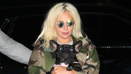 Lady Gaga recupera a sus dos perritos, que habían sido raptados