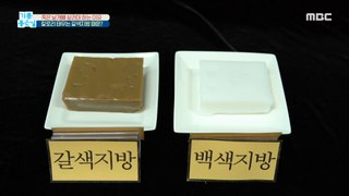 [HEALTHY] Why do we need to save the dead wing bones?, 기분 좋은 날 210304