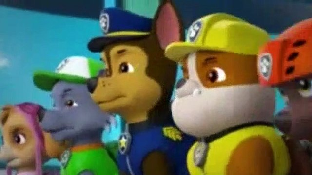 PAW Patrol Season 6 Episode 5,6 Pups Save A Melon Festival Pups Save A Cow
