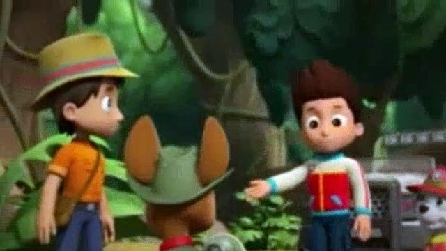 PAW Patrol Season 6 Episode 11,12 Pups And The Stinky Bubble Trouble Pups Save The Baby Ostriches