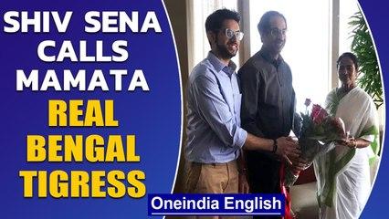 Didi Vs All: Shiv Sena wishes Mamata Banerjee a 'roaring success' | Oneindia News