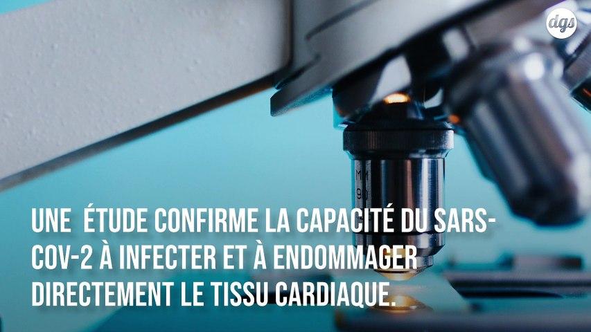 De nouvelles preuves montrent que le coronavirus peut infecter et tuer les cellules du cœur