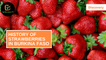 Discovery: History of strawberries in Burkina Faso