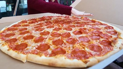 The best pizza in every state, from pepperoni in New York to giant slices in Nevada