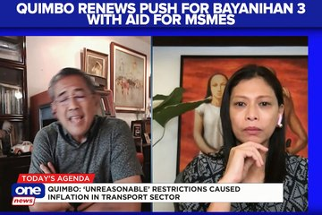 Quimbo renews push for Bayanihan 3, including aid for MSMEs