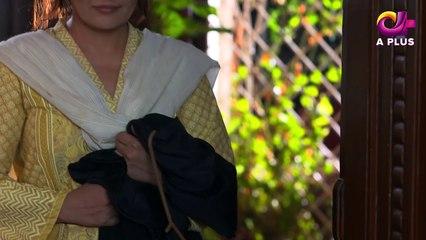 Mujhay Beta Chahiye - Episode 7 | Aplus Dramas | Sabreen Hisbani, Shahood Alvi, Aiza Awan