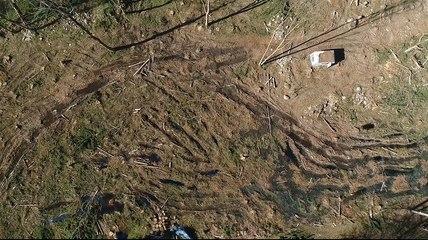 Une forêt massacrée en Ariège