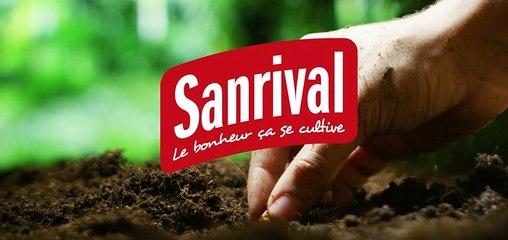 Semez des fruits et légumes avec Sanrival
