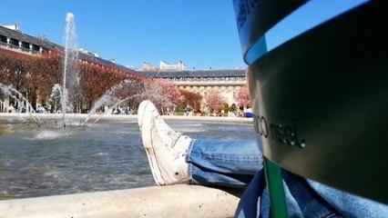 Températures printanières : le bain de soleil des Parisiens