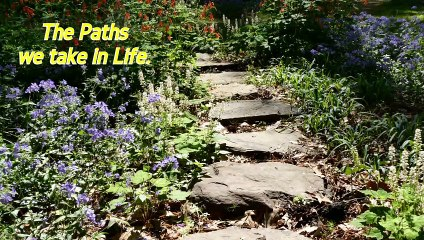 Paths We Take in Life