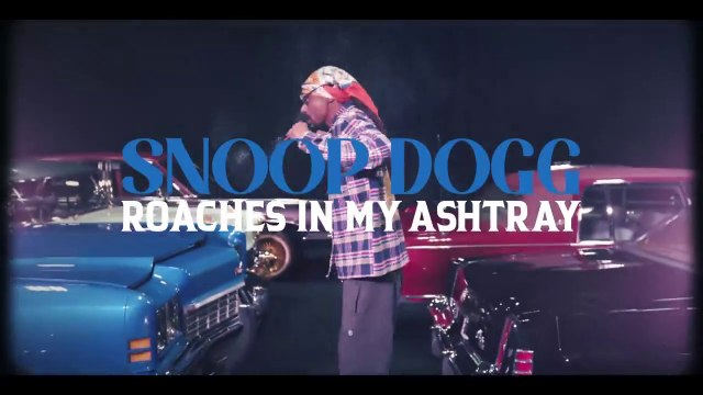 "Snoop Dogg feat ProHoeZak ""Roaches In My Ashtray"""
