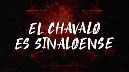 Los Ejemplares Del Rancho - El Chavalo Es Sinaloense
