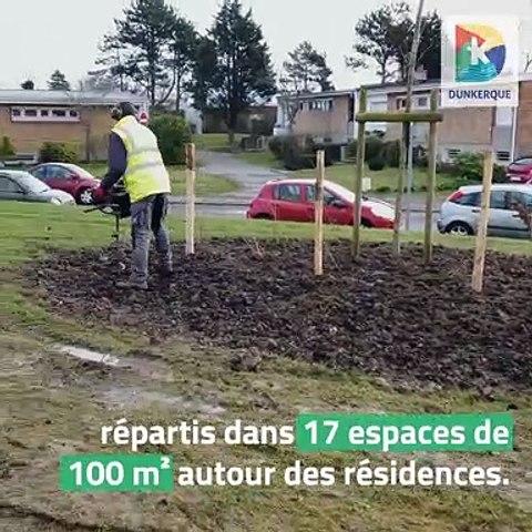 Projet Dunkerque au Naturel - Les abords des résidences Britania à Malo-les-Bains