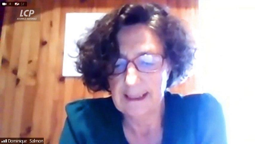 Echange entre l'infectiologue Dominique Salmon-Ceron  et le député Cédric Villani sur les facteurs de risque d'un Covid long - 08/04/2021