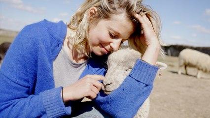 Oise : elle sauve dans son refuge des animaux maltraités, abandonnés ou destinés à l'abattoir