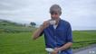 Europa maxximal: Die älteste Teeplantage Europas