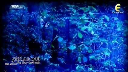 Đội Đặc Nhiệm CID Tập 780 THVL3 Lồng Tiếng tap 781 xem phim doi dac nhiem cid tap 780