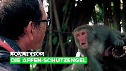 Local heroes: Die Affen-Schutzengel