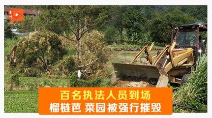被指非法霸占土地  武吉丁宜农耕地被毁