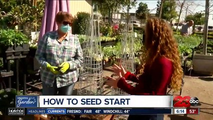 Growing your Garden, seed starting