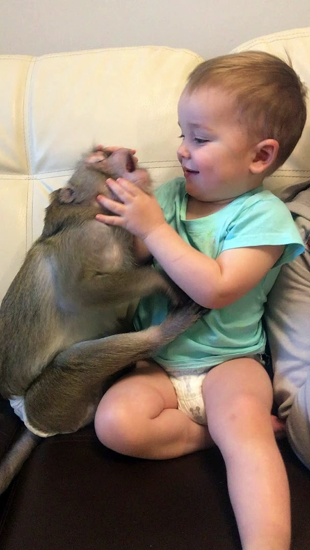 Kid Plays with Monkey Pal