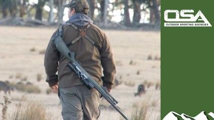 Hunting fallow deer and roos in Australia